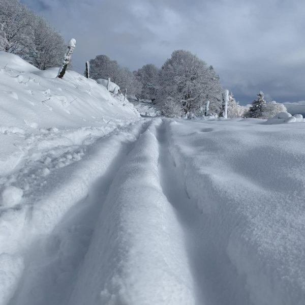 balade raquette neige vosges